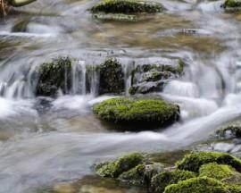 rock water 1
