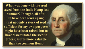 George-Washington-seeds