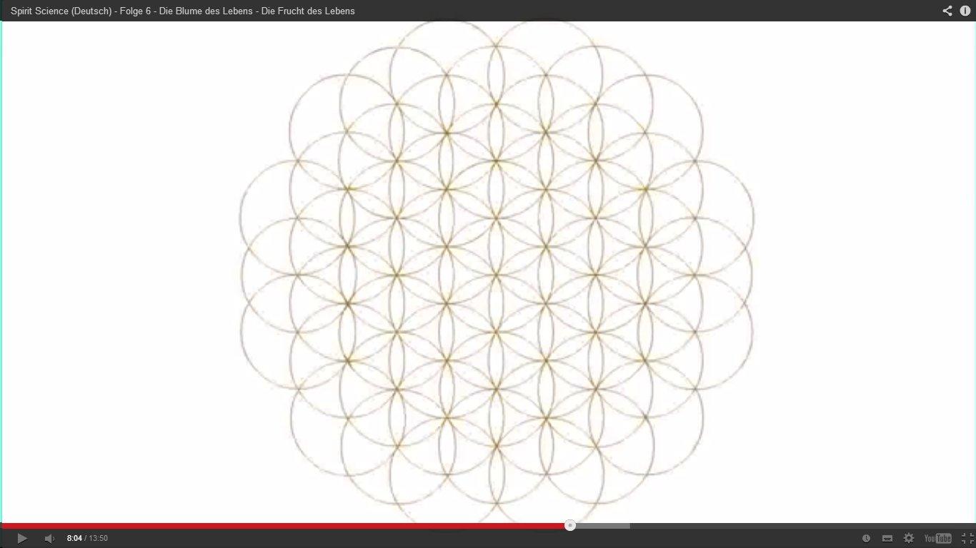 Die Ordnung Der Schöpfung Heilige Geometrie Blume Und